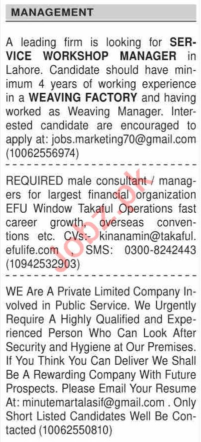 Dawn Sunday Classified Ads 11th Aug 2019 Management Staff 2019 Job