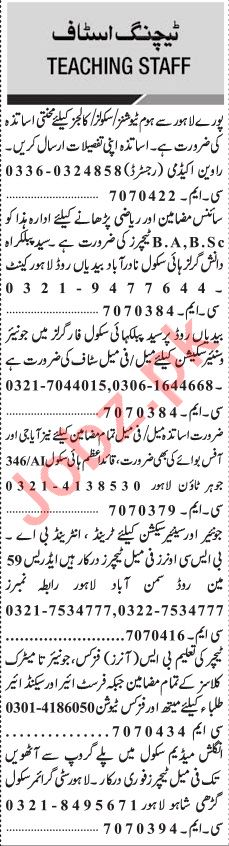 Jang Sunday Classified Ads 11th Aug 2019 for Teachers