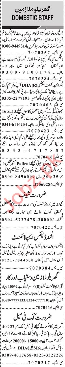Jang Sunday Classified Ads 11th Aug 2019 for Domestic Staff