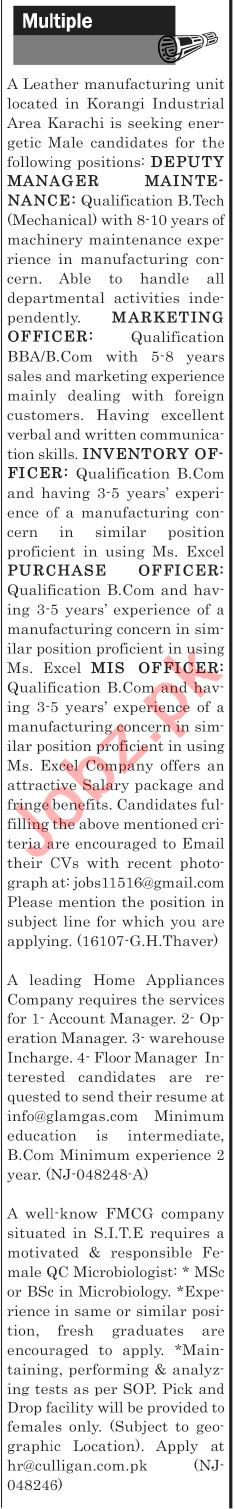 The News Sunday Classified Ads 11th Aug 2019 Office Staff