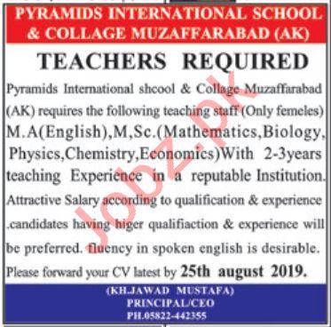 Pyramids International School & College Muzaffarabad Jobs