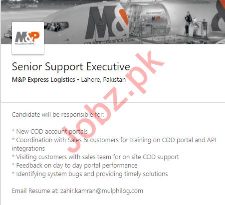 Senior Support Executive Job in Lahore