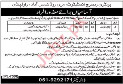 Poultry Research Institute Rawalpindi Jobs 2019