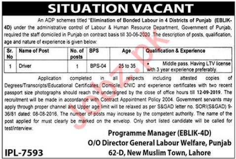 Labor & Human Resource Department Job For Driver in Lahore