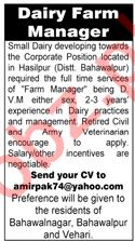 Dairy Farm Manager Job 2019 in Hasilpur Bahawalpur