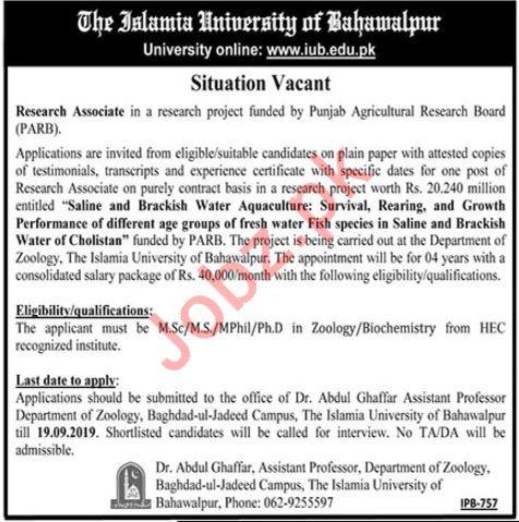 The Islamia University of Bahawalpur Job 2019