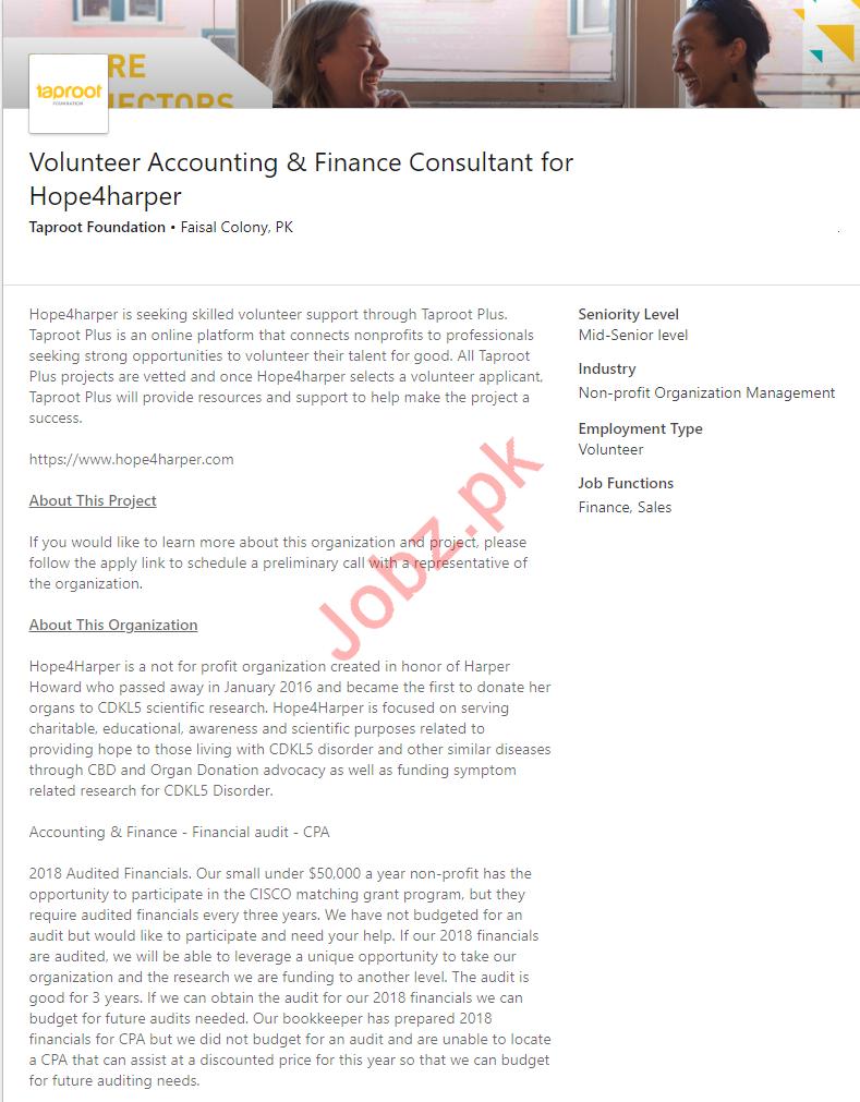 Volunteer Accounting & Finance Consultant Job in Karachi
