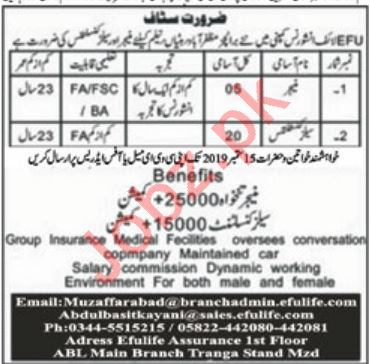 EFU Life Assurance Jobs for Manager & Sales Consultants