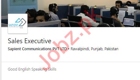 Sales Executive Job 2019 in Rawalpindi