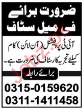 IT Professionals Jobs 2019 in Abbottabad KPK