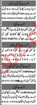 Teaching & Non Teaching Staff Jobs in Peshawar KPK