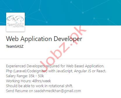 Web Application Developer Jobs in Karachi