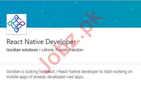 React Native Developer Job in Lahore