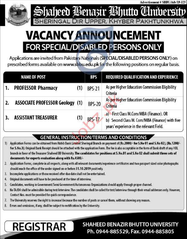 Shaheed Benazir Bhutto University Upper Dir KPK Jobs