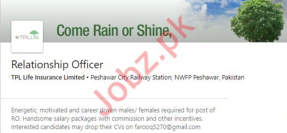 Relationship Officer Jobs in Peshawar