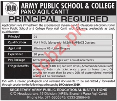 Army Public School & College Pano Aqil Cantt Job 2019