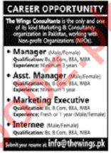The Wings Consultants Jobs 2019 in Lahore