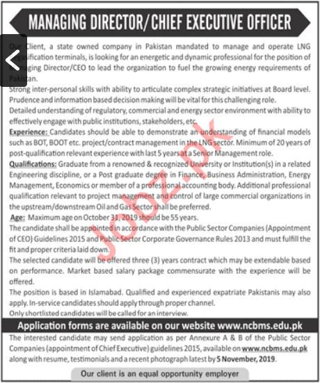 National College of Business & Management Sciences Jobs 2019