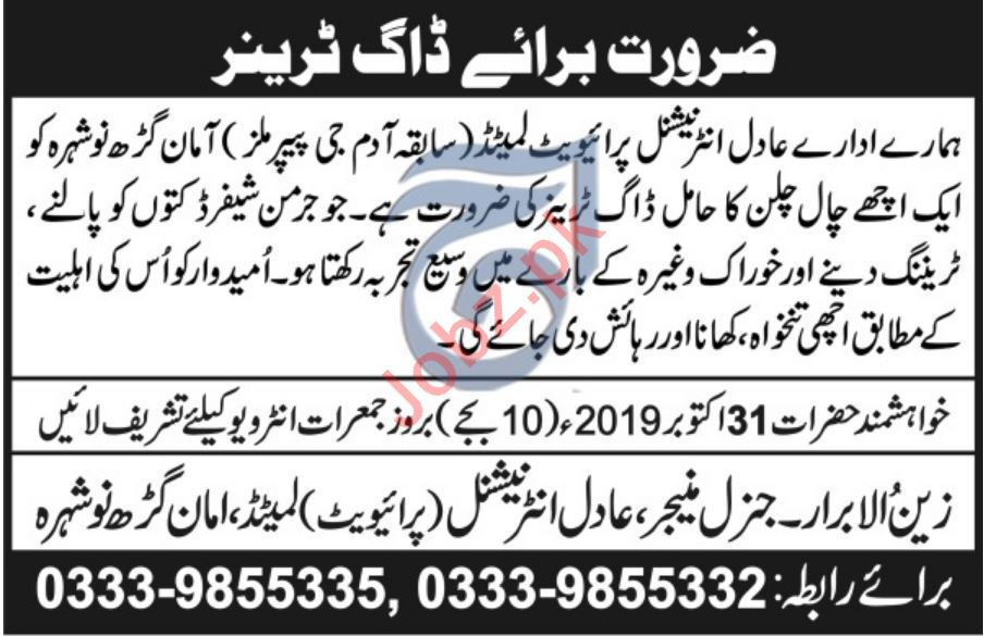 Adal International Pvt Limited Job For Dog Trainer