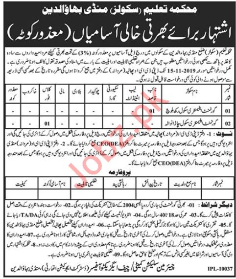 Government Elementary Schools Jobs For Disabled Persons