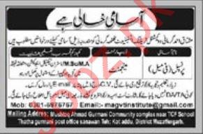 Mushtaq Ahmad Gurmani Vocational Training Institute Jobs