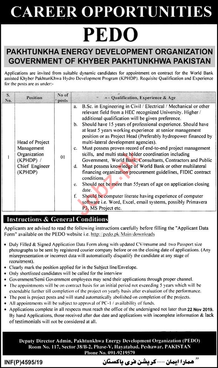 Pakhtunkhwa Energy Development Organization Jobs 2019