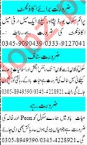 Teaching & Non Teaching Staff Jobs For Schools in Peshawar
