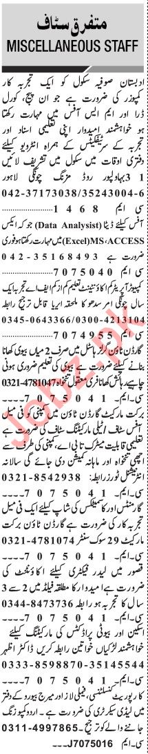 Jang Sunday Classified Ads 10th Nov 2019 for General Staff