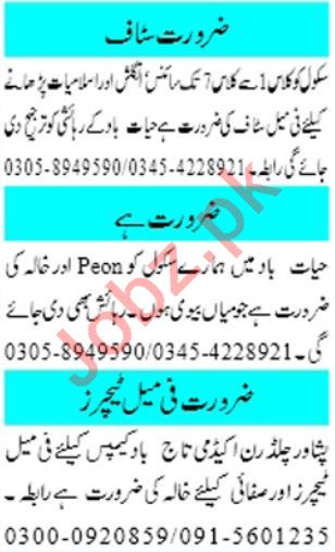 Mashriq Sunday Classified Ads 10th Nov 2019 for Teachers