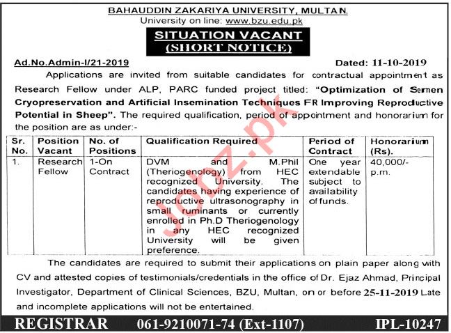Bahauddin Zakariya University BZU Job For Research Fellow