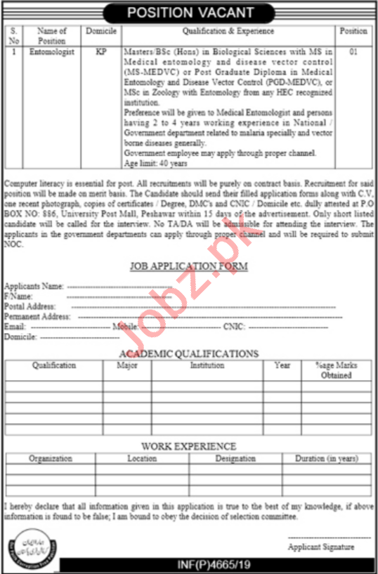 PO Box No 886 University Post Mall Peshawar Jobs 2019
