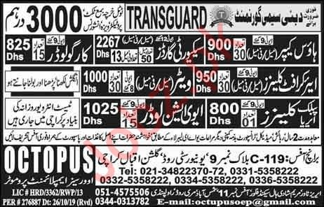 Aircraft Cleaner Cargo Loader Waiter Jobs in Dubai