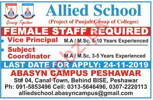 Allied School Abasyn Campus Peshawar KPK Jobs 2019