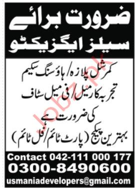 Usmania Developers & Builders Lahore Jobs