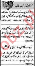 Dunya Sunday Classified Ads 17th Nov 2019 for Sales Staff