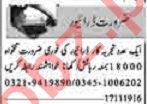 Dunya Sunday Classified Ads 17th Nov 2019 for Driving Staff