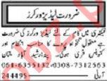 Ladies Worker Jobs 2019 in Multan