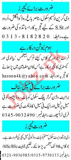 Mashriq Sunday Classified Ads 17th Nov 2019 for Teachers