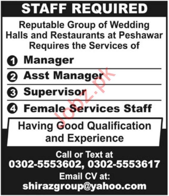 Wedding Halls & Restaurants Jobs 2019 in Peshawar KPK