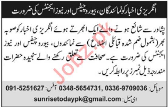 Sunrise Today Pakistan Media Group Jobs 2019
