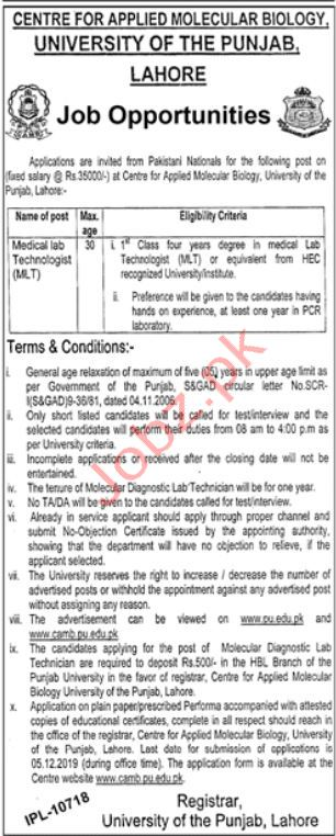 Center for Applied Molecular Biology PU Jobs 2019