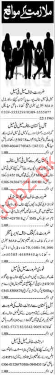 Data Entry Operator & Assistant Manager Jobs 2019