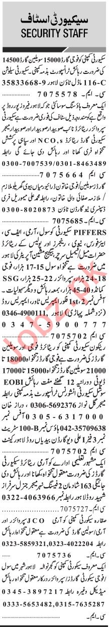 Jang Sunday Classified Ads 24 Nov 2019 for Security Staff