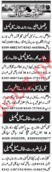Daily Nawaiwaqt Newspaper Classified Jobs in Islamabad