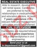 Real Estate Executive & Civil Supervisor Job 2019 in Karachi