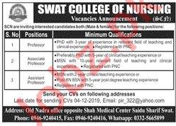 Professor jobs in Swat College of Nursing SCN