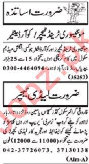 Nawaiwaqt Sunday Classified Ads 1st Dec 2019 for Educational