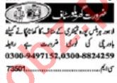Khabrain Sunday Classified Ads 1st Dec 2019 House Staff