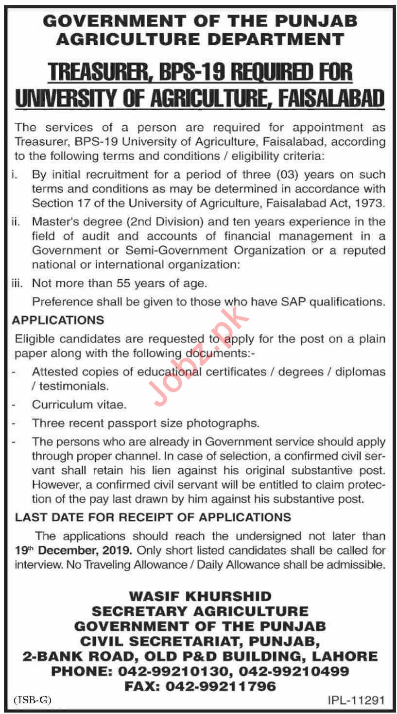 University of Agriculture Faisalabad UAF Jobs for Treasure