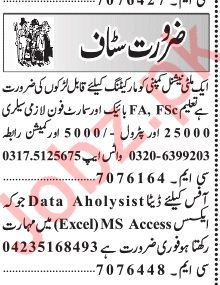 Marketing Staff Data Aholysist Jobs in Lahore